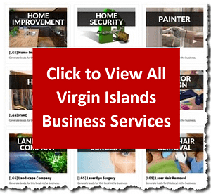 Click to View All Virgin Islands Business Services